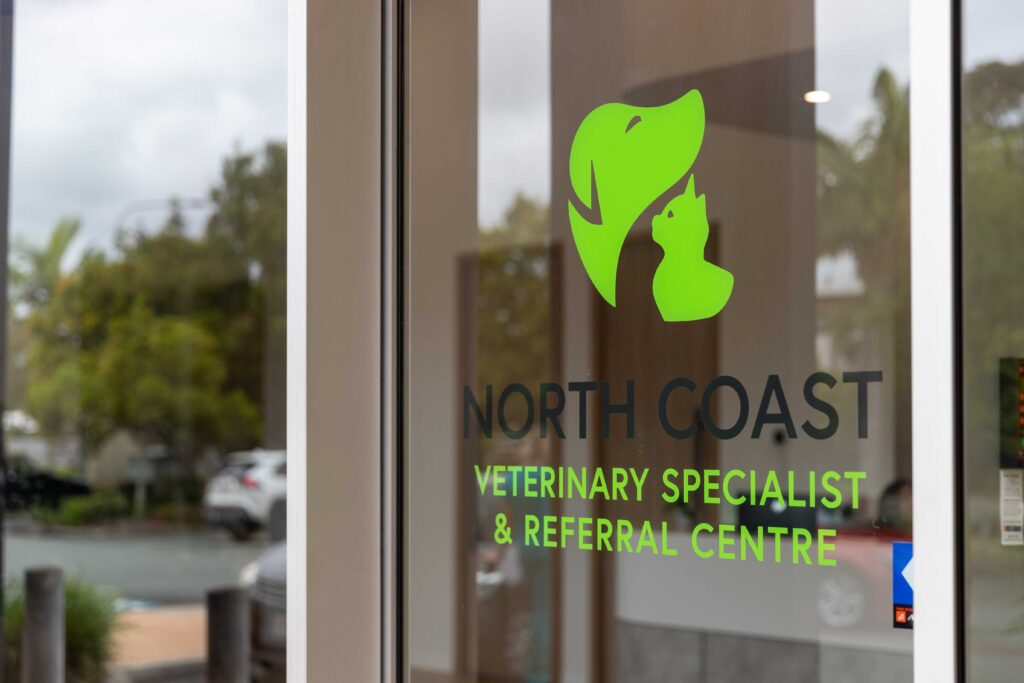 End of Life North Coast Veterinary Specialist