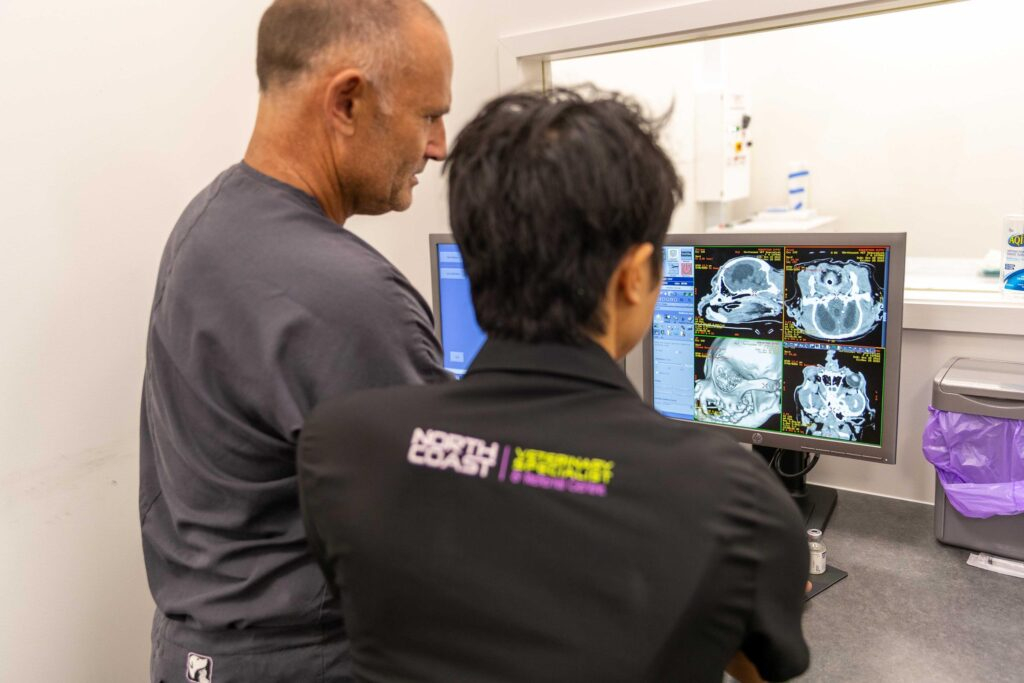 Imaging North Coast Veterinary Specialist
