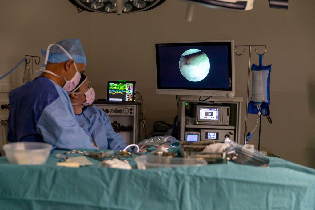 Surgery North Coast Veterinary Specialist