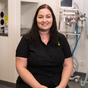 Our Team North Coast Veterinary Specialist